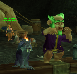 What happens when you Cat is spun-dry. Shrinkage! Thats a normal sized Gnome.